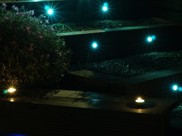 bright blue-white lighting hignlights garden steps