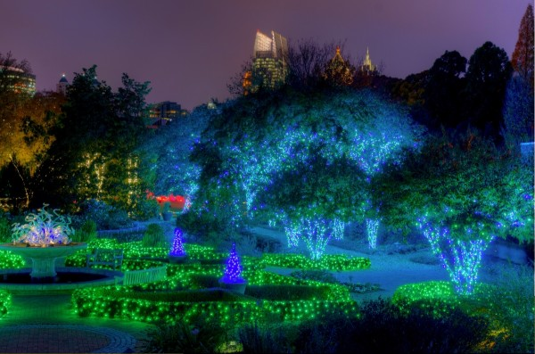 multi-colored lighting in Piedmont Park in Atlanta