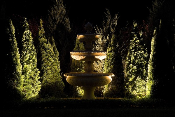 garden lighting from ground illuminates fountain and tall evergreen trees