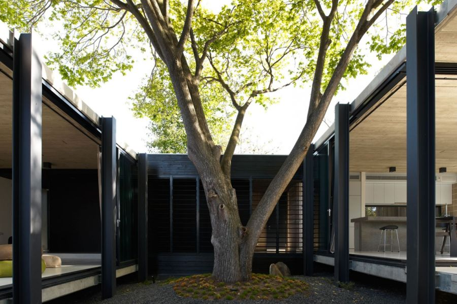 Central courtyard of Elm & Willow House in Melbourne