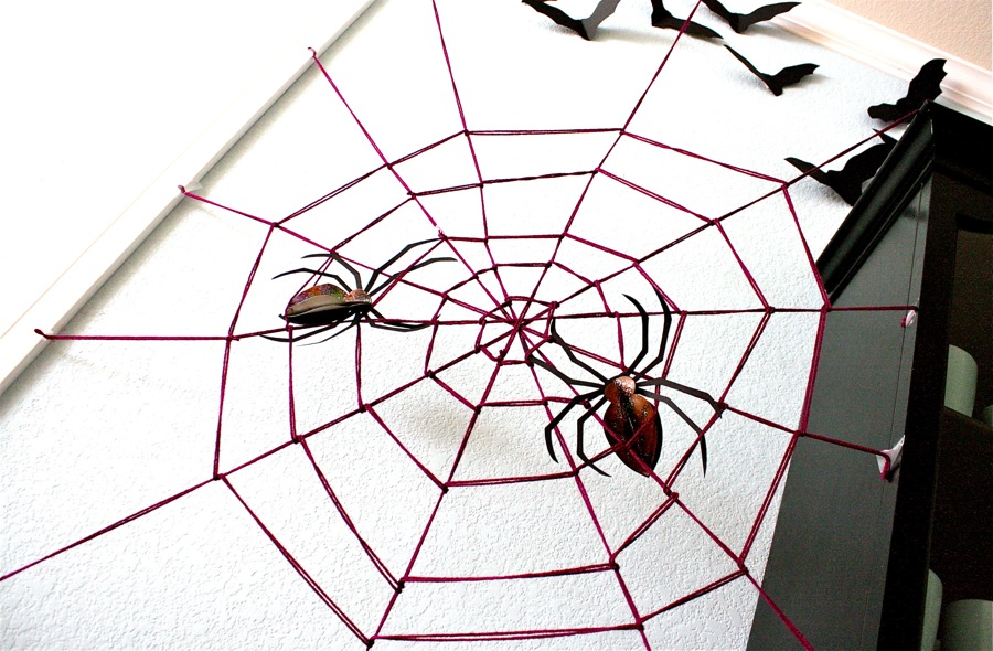 Cool Spider web