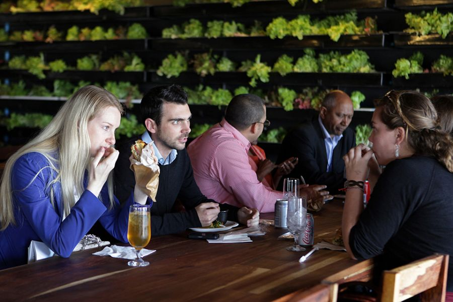 Dining experience at the Moyo Restaurant in Cape Town