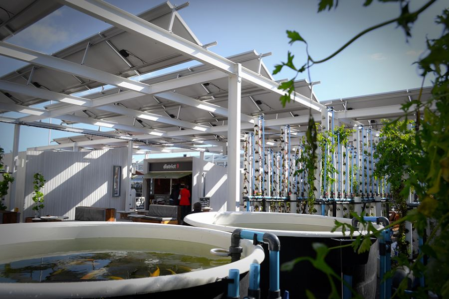 Fish ponds powered by photovoltaic solar panels