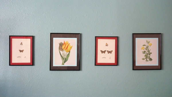 Grouping of botanical artwork