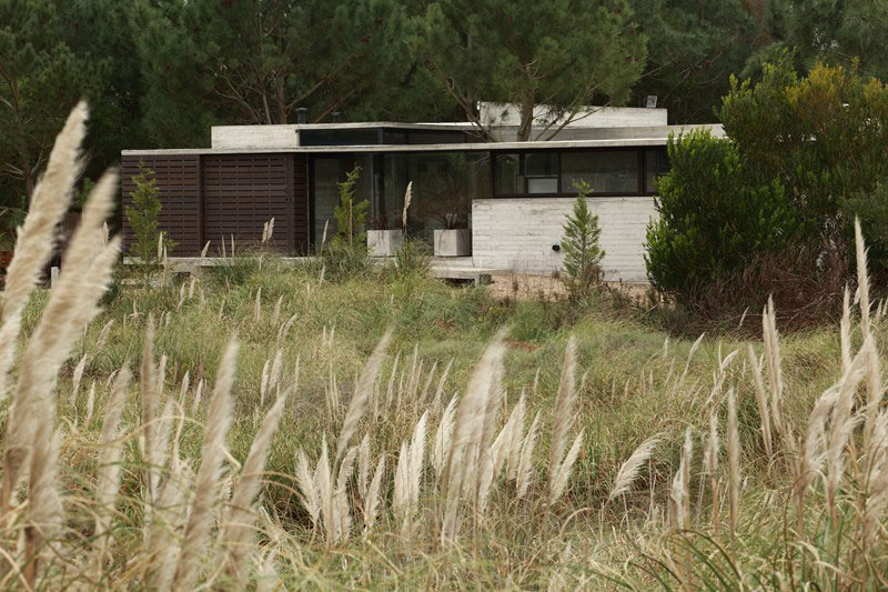 Natural green around the Buenos Aires residence