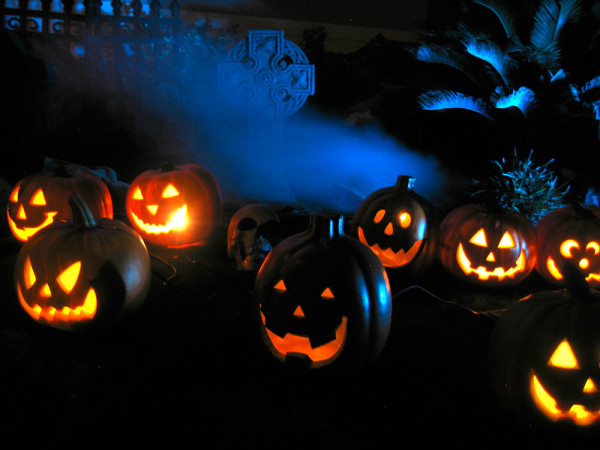 Orange pumpkins with skull cross and blue background lighting