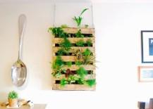 Pallet-living-wall-DIY-217x155