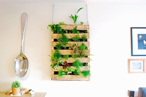 Pallet living wall DIY