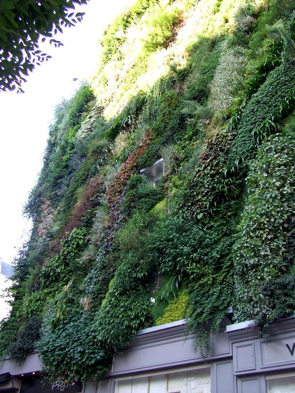 Patrick Blanc Green Wall Paris (2)