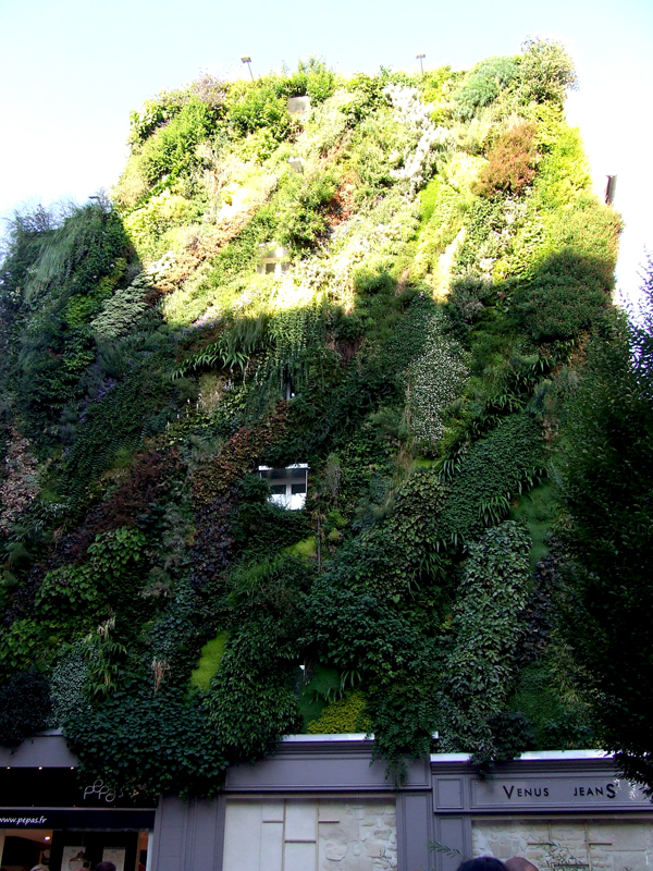Patrick Blanc Green Wall Paris (3)