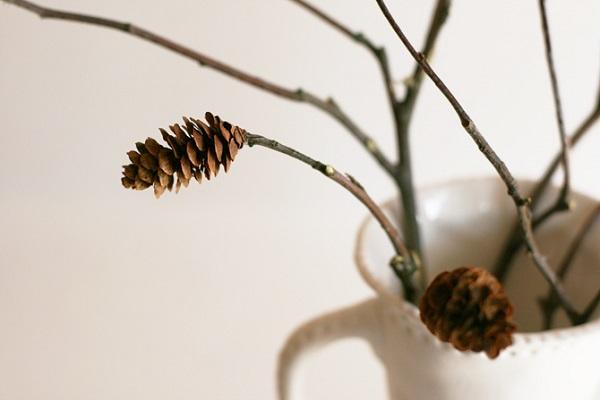 Pine cone flower arrangement