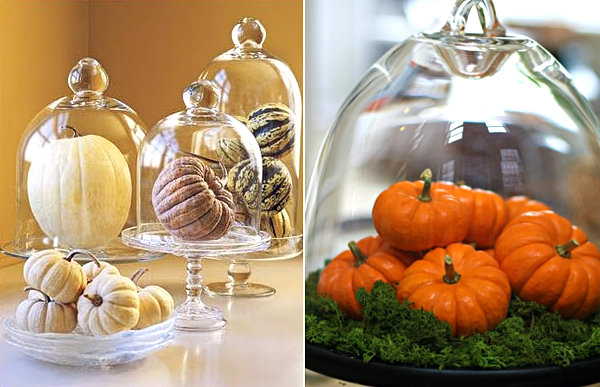 Pumpkins in domes 10 Ways to Decorate with Pumpkins