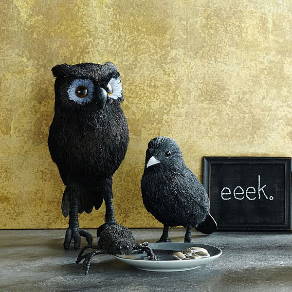 Spooky spider, crow and owl LAST DETAILS WITH 20 FABULOUS DECOR IDEAS FOR HALLOWEEN LAST DETAILS WITH 20 FABULOUS DECOR IDEAS FOR HALLOWEEN Spooky spider crow and ow