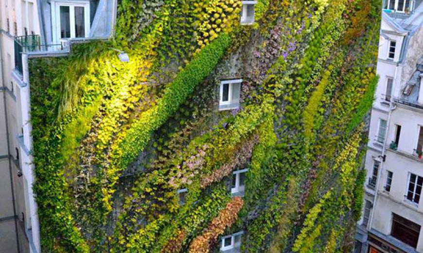 Revealing A Stunning Living Wall: Patrick Blanc's Work for Paris Design Week