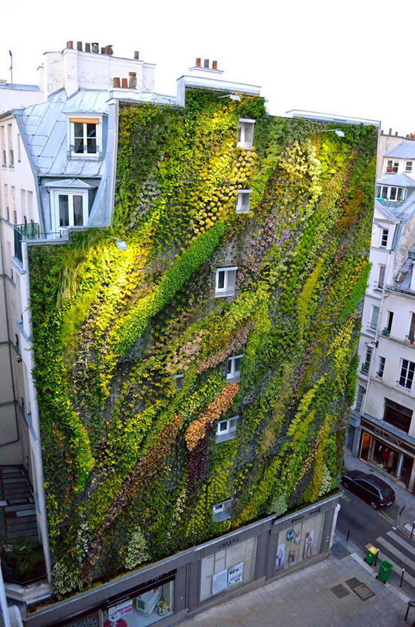 Vertical Garden Paris 2 Revealing A Stunning Living Wall: Patrick Blancs Work for Paris Design Week