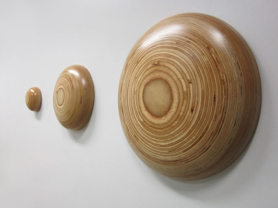 Wallbutton Cricles from wood