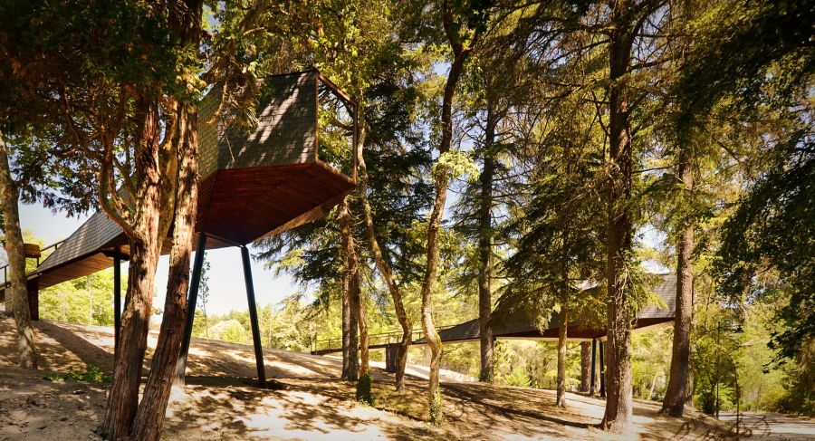 Eco freindly tree houses with snake like design in Portugal Tree Snake Houses At The Pedras Salgadas Eco Resort