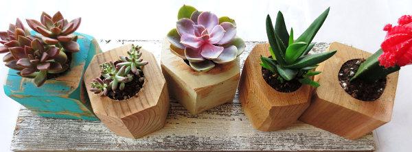 Faceted wooden gem planters