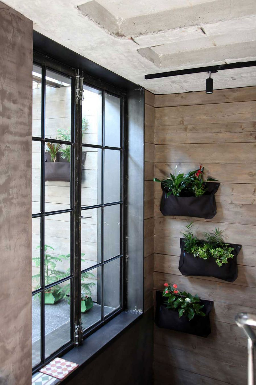 Hanging wall planters for the indoors