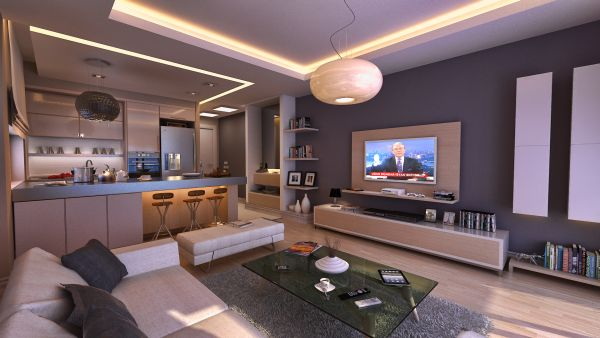 Open plan living space idea for a bachelor pad