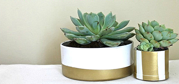 View in gallery PVC pipe succulent planters Succulent Planter Ideas