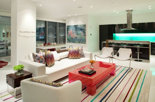 Pair of Paulistanos in the contemporary living room