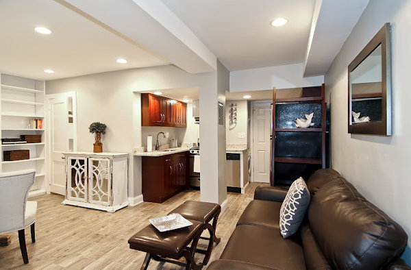 Basement Apartment Design Ideas In Gallery Refreshing Condo