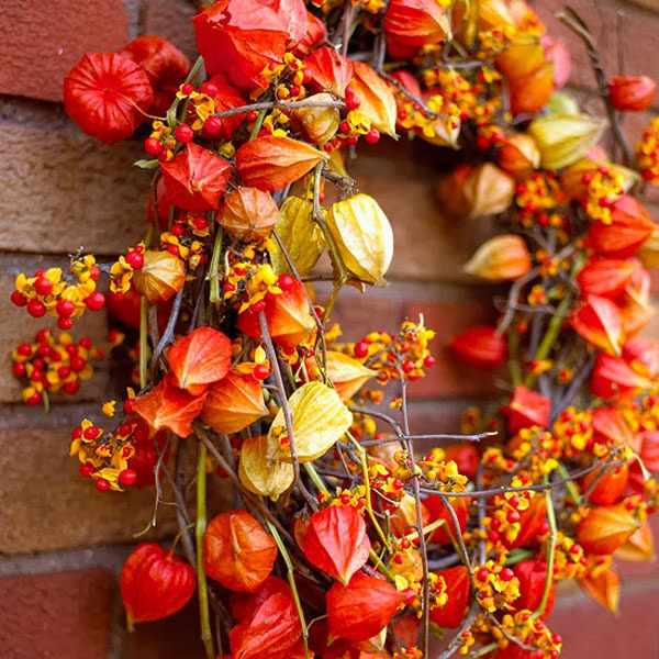 Thanksgiving wreath made from Chinese lantern plants