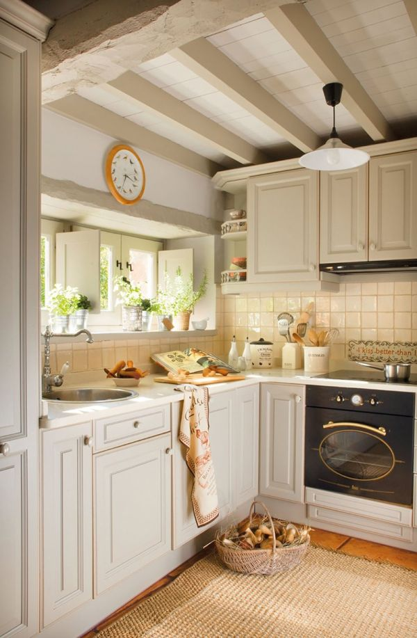 Traditional kitchen design with sylish cabinets