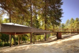 Tree Snake Houses At The Pedras Salgadas Eco Resort