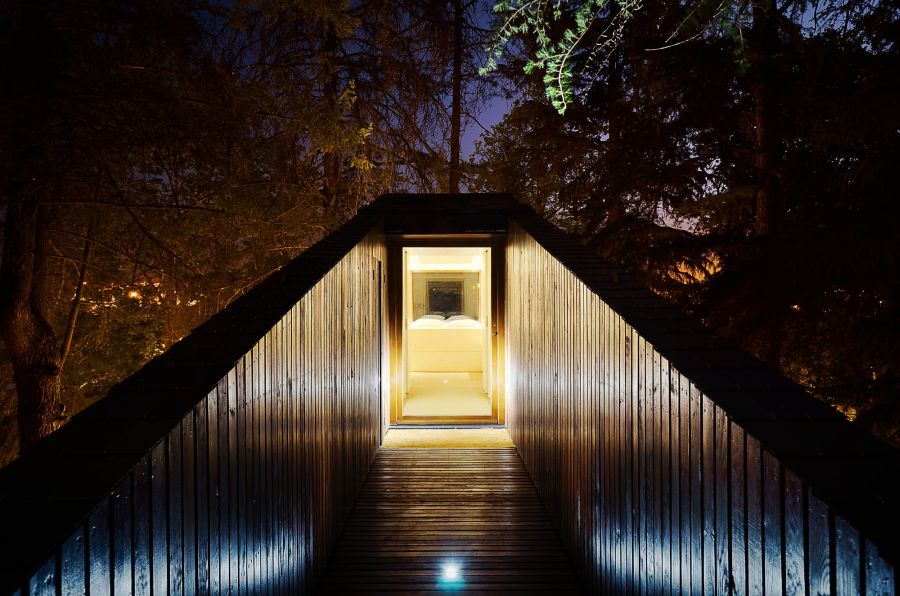 Treehouse walkway illuminated at night
