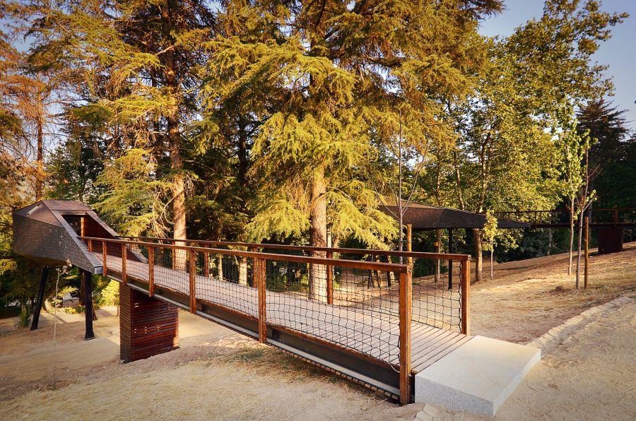 Unique tree house design