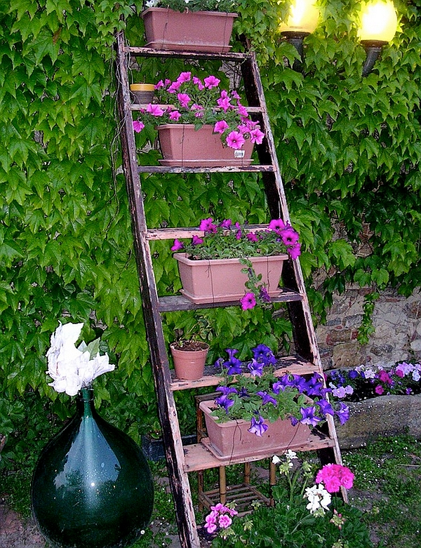 Dazzling ladder display in the garden with bright pink and blue flowers