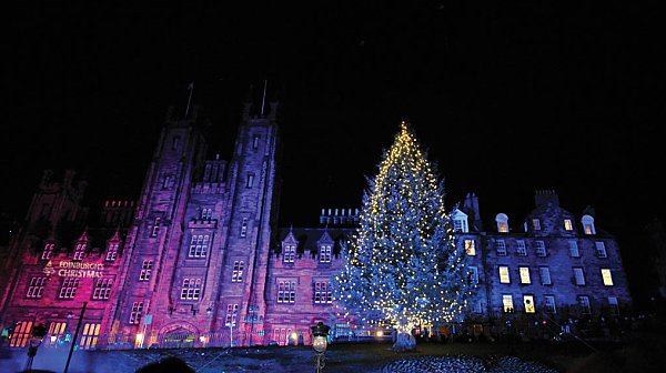 The 20 most beautiful christmas trees in the world for Most beautiful christmas photos