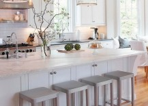 Kitchen-with-plants-and-produce-217x155