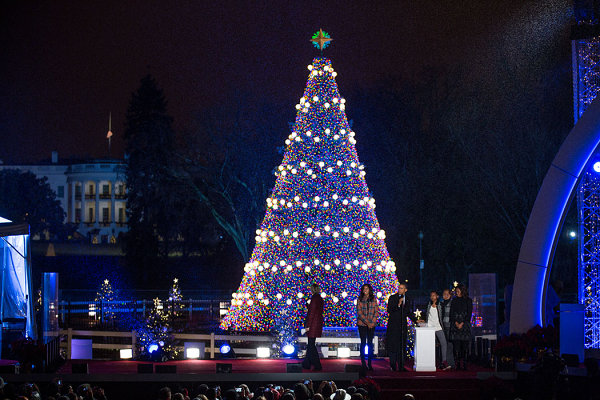 National Christmas tree in Washington, D.C.