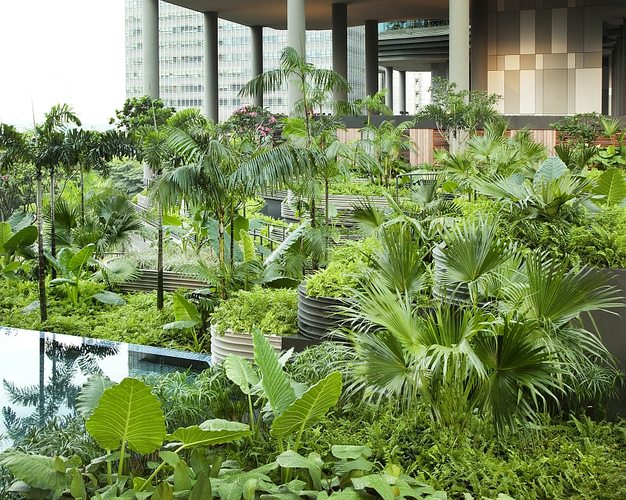 An oasis of green at the Parkroyal