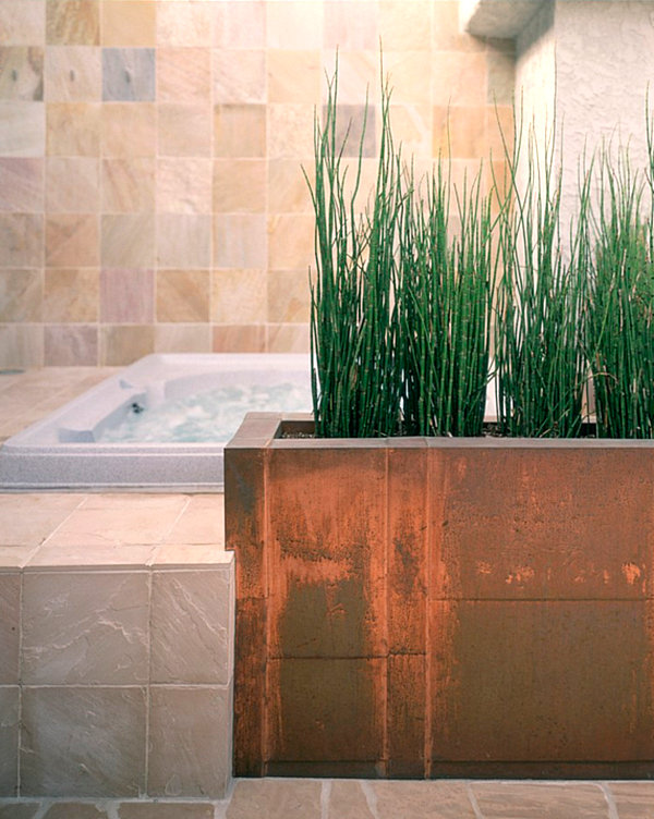 The Ideal Wardrobe: The Best Bathroom Plants For Your Interior