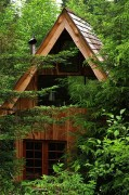 Cool Japanese Forest House Design On A Budget