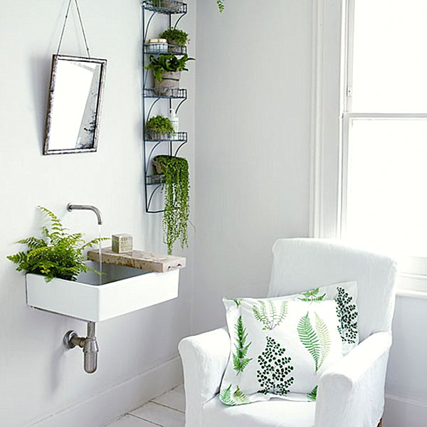Green ferns in a white bathroom