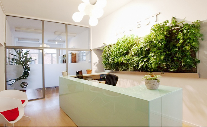 Green living wall at the office reception