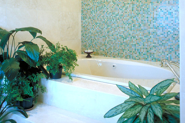Greenery by the tub