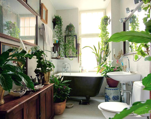 Plant-filled bathroom