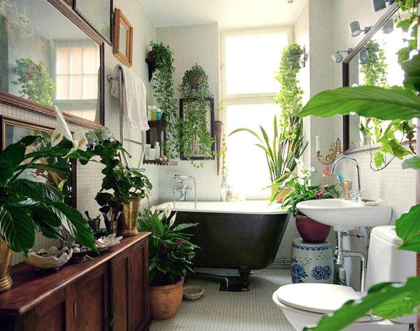 Plant-filled bathroom