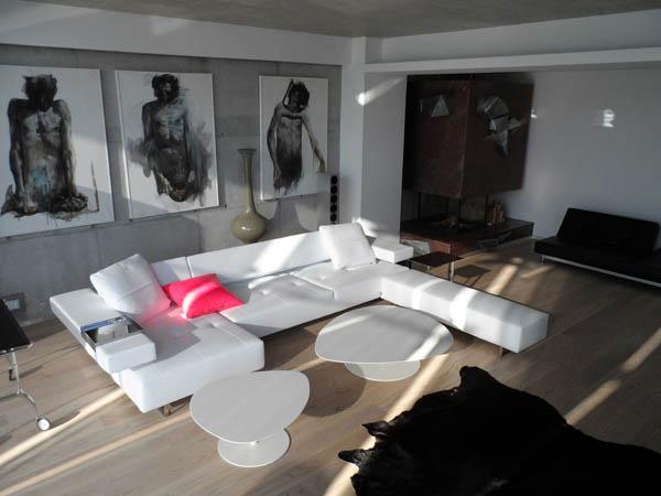Zinc House by Horia Reit  (11)