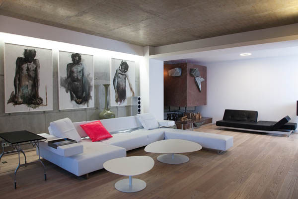 Zinc House by Horia Reit  (13)