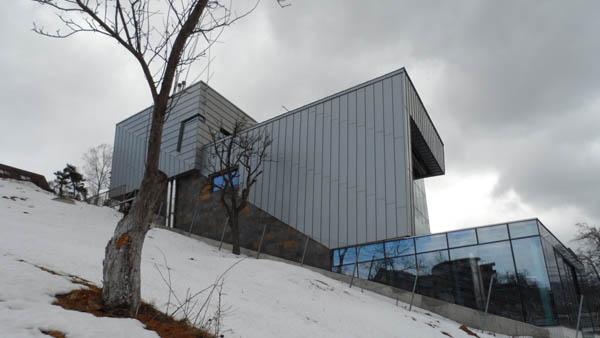 Zinc House by Horia Reit  (35)
