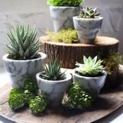 Marble planter pots