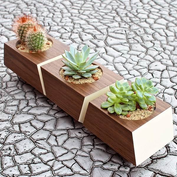 Modern wooden indoor planter