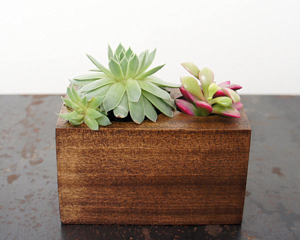 10 modern planters that welcome the spring in style for Wooden cactus planter